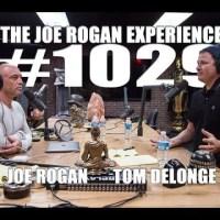 Joe Rogan Experience #1029 - Tom DeLonge