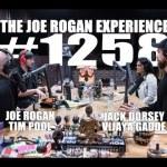 Joe Rogan Experience #1258 – Jack Dorsey, Vijaya Gadde & Tim Pool