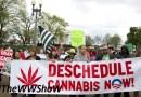 DEA Will Decide Whether it Will Reschedule Marijuana