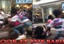 30+ Black Princesses Gets Into A Brawl at The Orange Park Mall