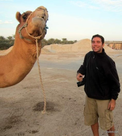 meeting the camels in Bahrain