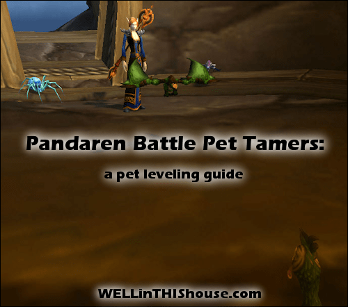 how to beat the battle pet tamers pandaria quests world of rh wellinthishouse com World of Warcraft Leveling 80 110 World of Warcraft Leveling Bot