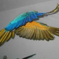 flying_blue_and_gold_macaw_th