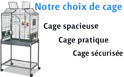 choisir une cage