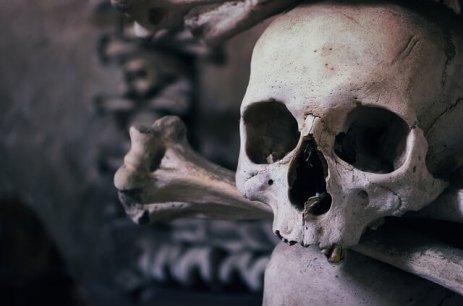 Der Totenkult
