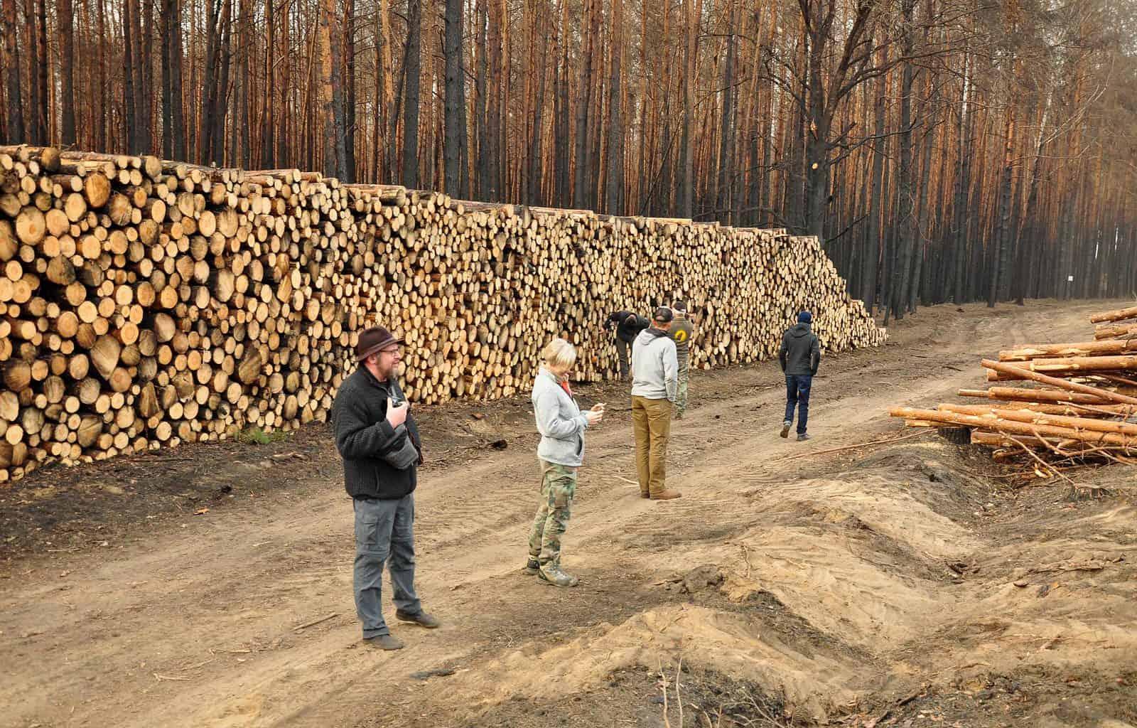 Forest Fire Treuebrietzen Brandenburg-22458 © Christoph Nowicki