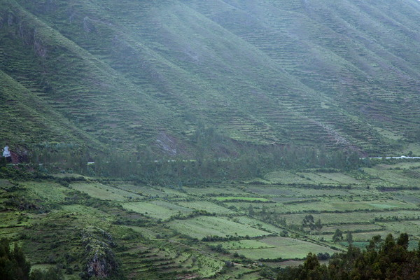 Patchworked fields and mountainside terraces, Sacred Valley, Peru