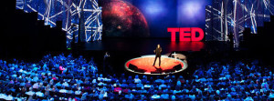 TED | TEDx | Audience Yoga Revolution Earth Tones Frank Fitzpatrick yoganomics