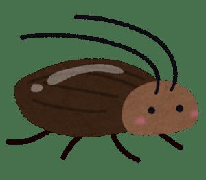 梅雨のゴキブリ対策