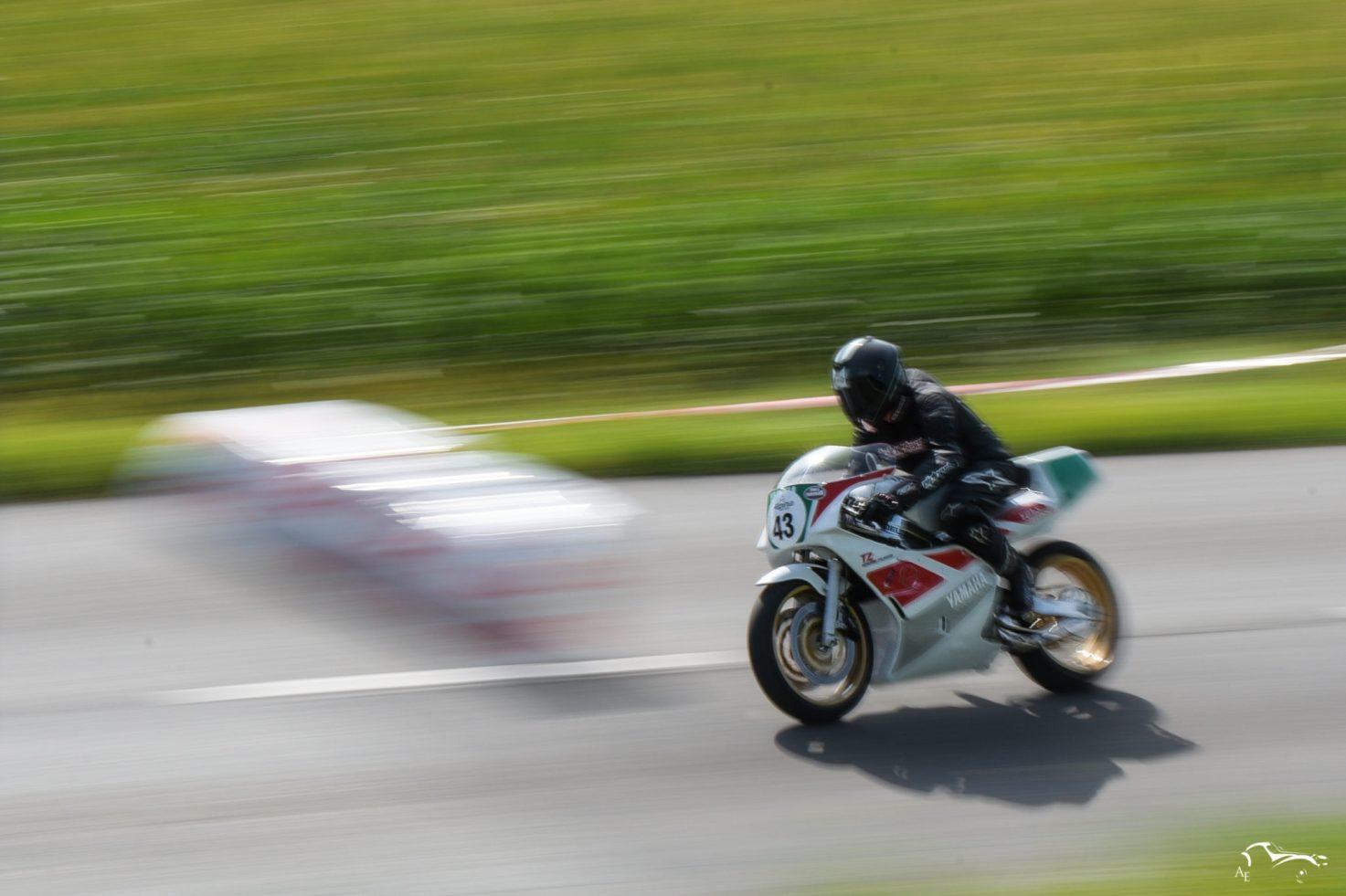 Yamaha TZ 250 cc 1989