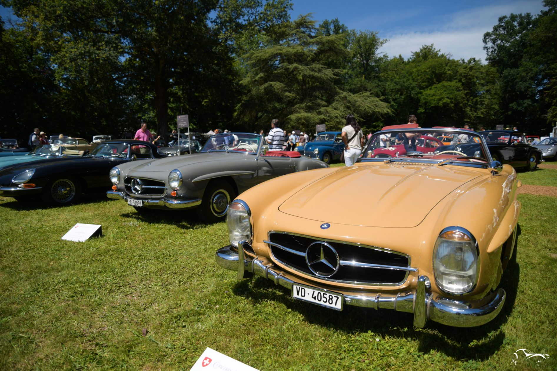 Mercedes-Benz 300 SL & 190 SL