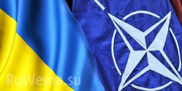 ВНАТО назвали условие длявступления Украины вальянс | Русская весна