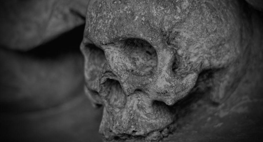 Исследователи раскопали части скелета древней женщины, которые выявили шокирующие факты