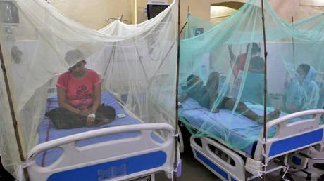 Десятки людей умирают от лихорадки денге в индийском Уттар-Прадеше, а в Дели также зарегистрированы случаи заражения комарами вируса