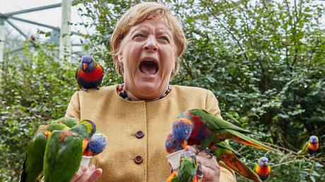 Уходящий канцлер Германии Ангела Меркель выглядит очень взволнованной на вирусном фото из парка экзотических птиц