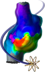 Rhythmia 3-Dimensional Mapping image