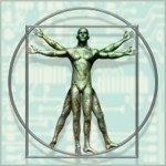 DaVinci's Vitruvian Man (Proportions of Man) at A-Fib.com