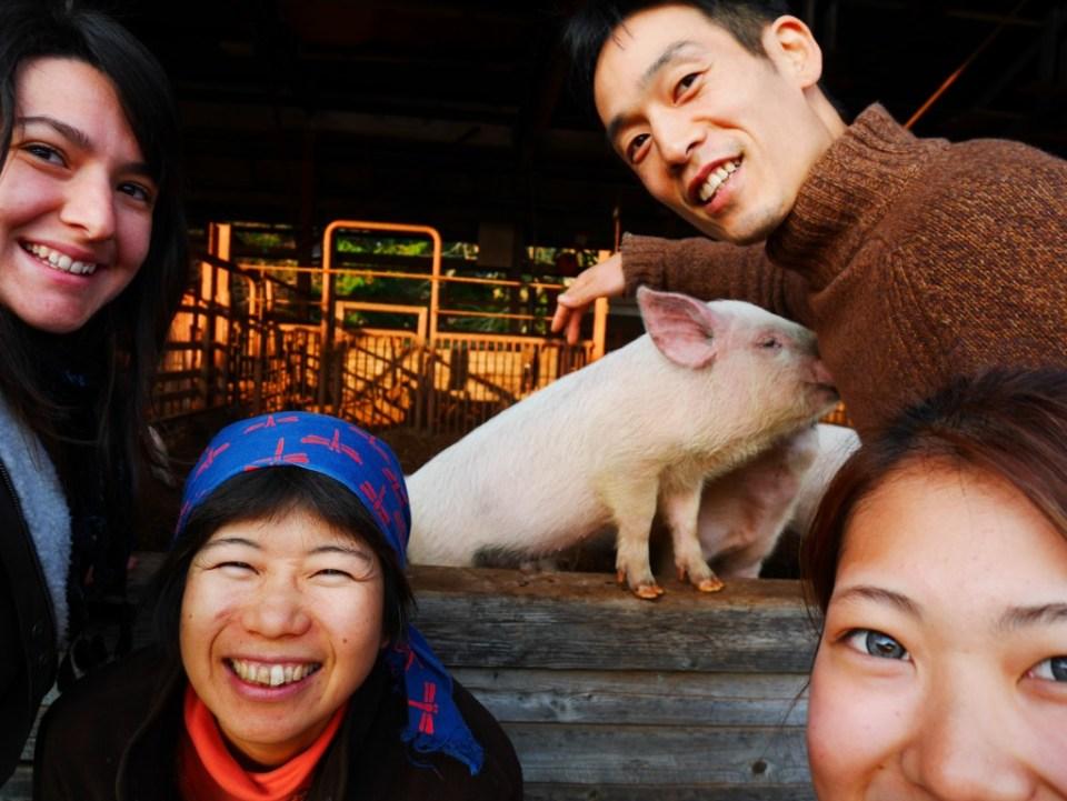 De gauche à droite et de haut en bas : moi, Yuko, petit cochon, Kai, Saki