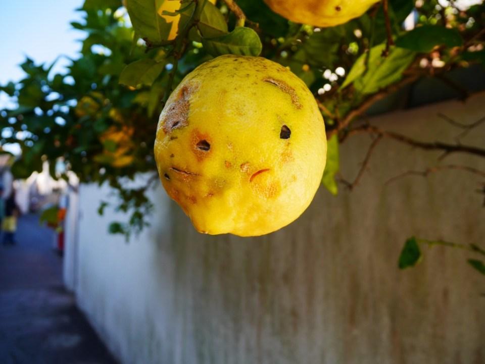 J'ai rencontré un citron un zeste mécontent