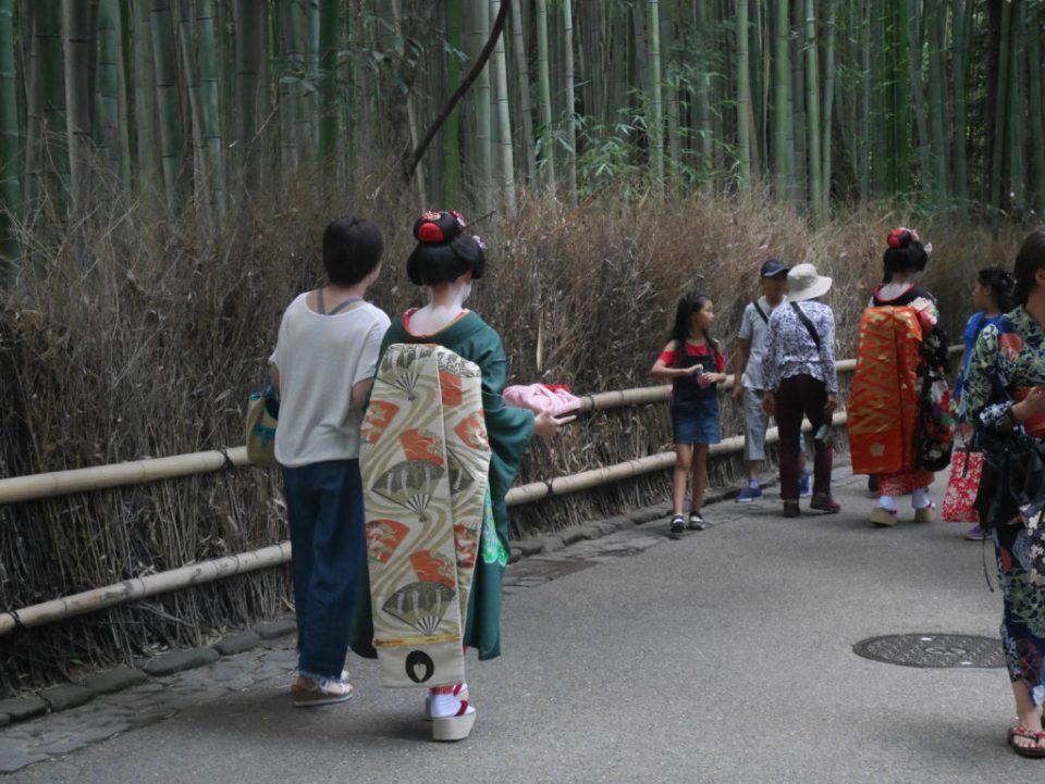 Apparition fortuite d'une maiko, apprentie geiko (les geisha de Kyôto)