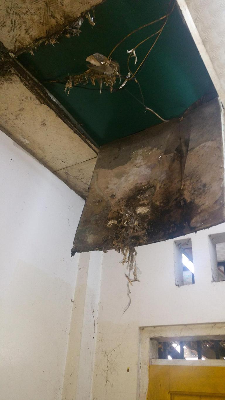 Le plafond des toilettes...