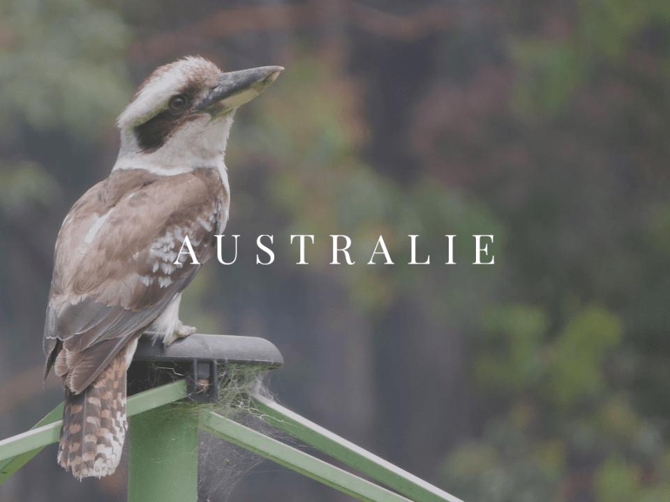 Australie AFQ