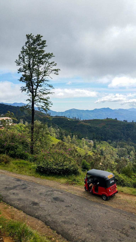 Tuk-tuk et des nuances de paysage