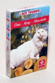 Kártyák Kedvenceink a cicák