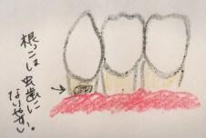 歯ぐきが下がった歯が虫歯になりやすい理由