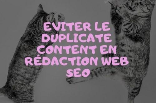 eviter-le-duplicate-content-en-redaction-web-seo