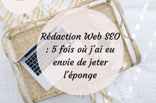 redaction-web-seo-jeter-l-eponge