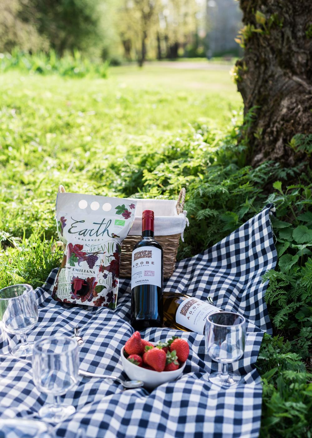 Onnistuneen piknikin salaisuus