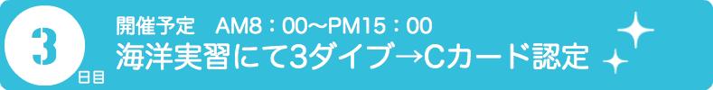PADIダイビングライセンス取得|海洋実習でのダイビング練習|Cカード認定