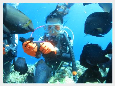 沖縄体験ダイビング 水深10mまで潜れる