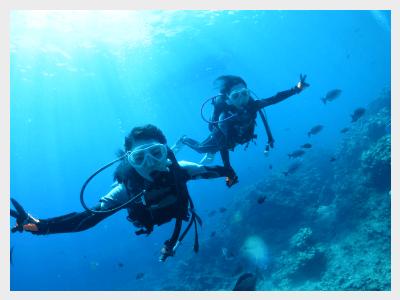 沖縄体験ダイビング|デラックスな海を楽しもう