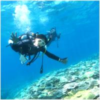 沖縄ダイビングライセンス|AOW