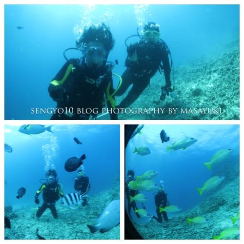 沖縄貸切ダイビング|ボート|初心者
