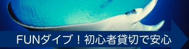 沖縄初心者ファンダイビング