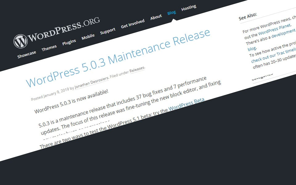 WordPress 5.0.3 maintenance release - a-support.dk