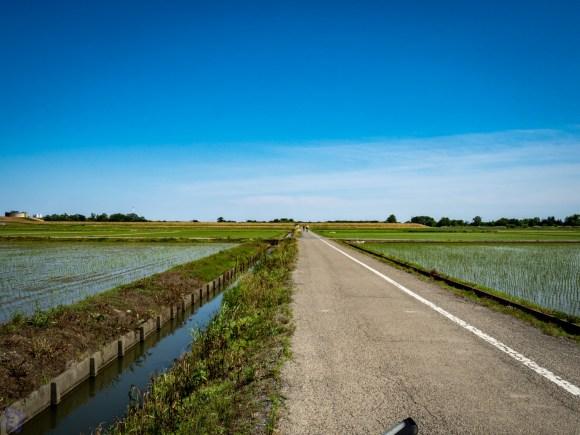 田園風景を走る