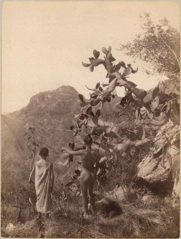 Baron Wilhelm Von Gloeden Two Boys On A Mountain
