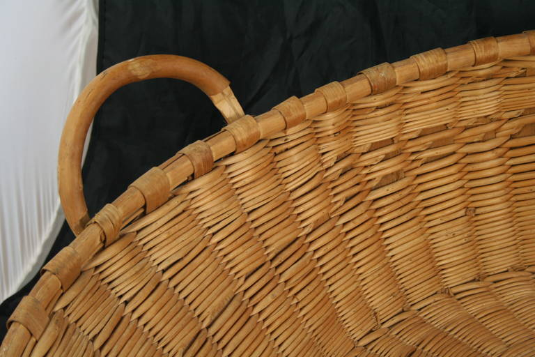 Large 19th Century French Winnowing Basket For Sale At 1stdibs