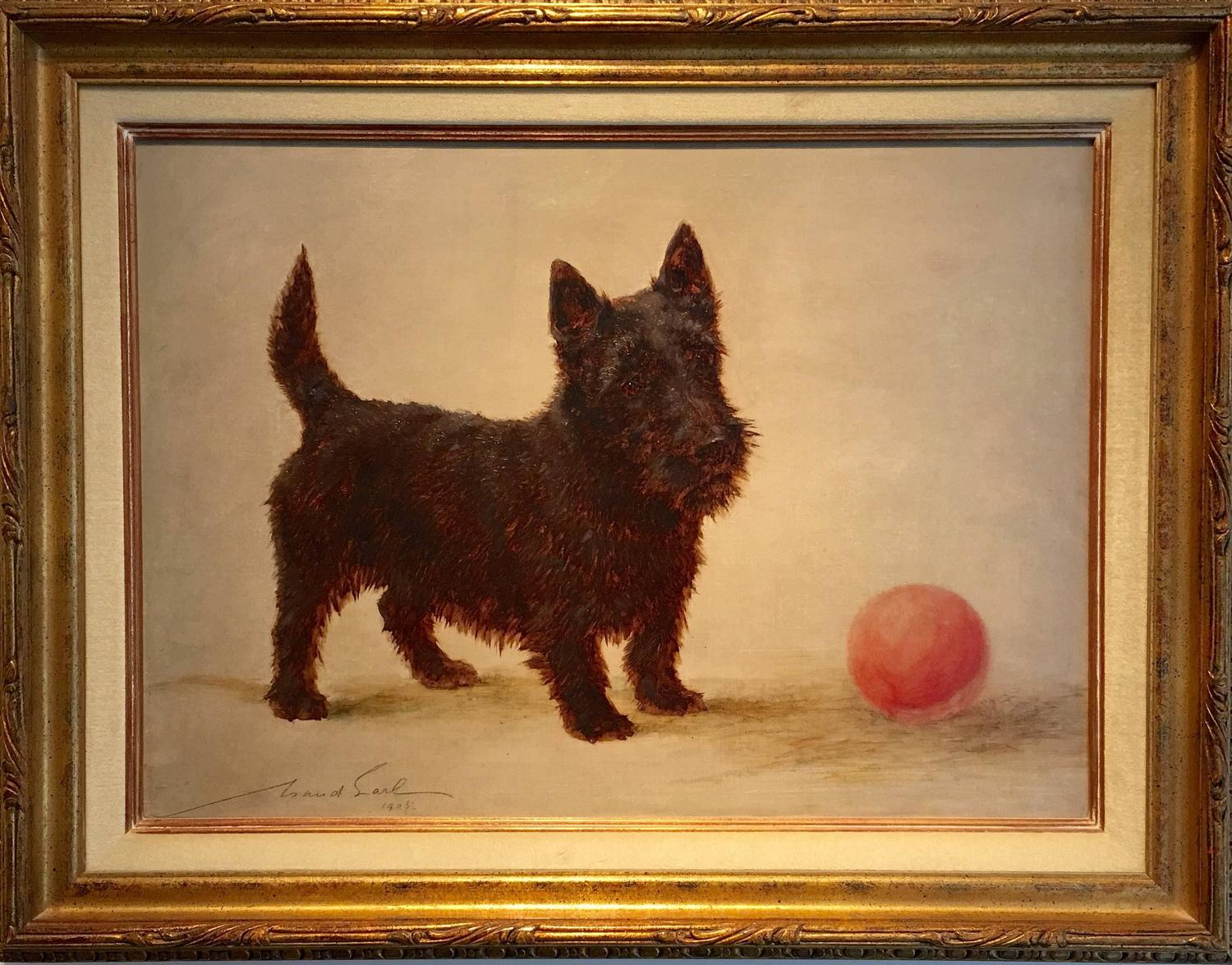 Maud Earl Scottish Terrier With A Red Ball 1905 For