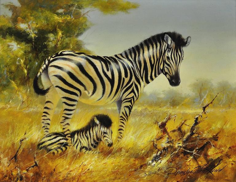 Douglas Van Howd Zebra Mare And Foal Painting For Sale