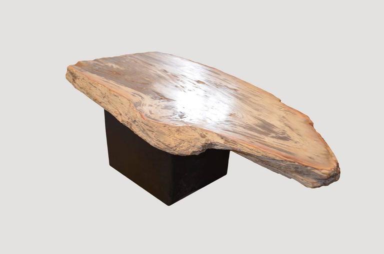 Single Slab Petrified Wood Coffee Table For Sale At 1stdibs