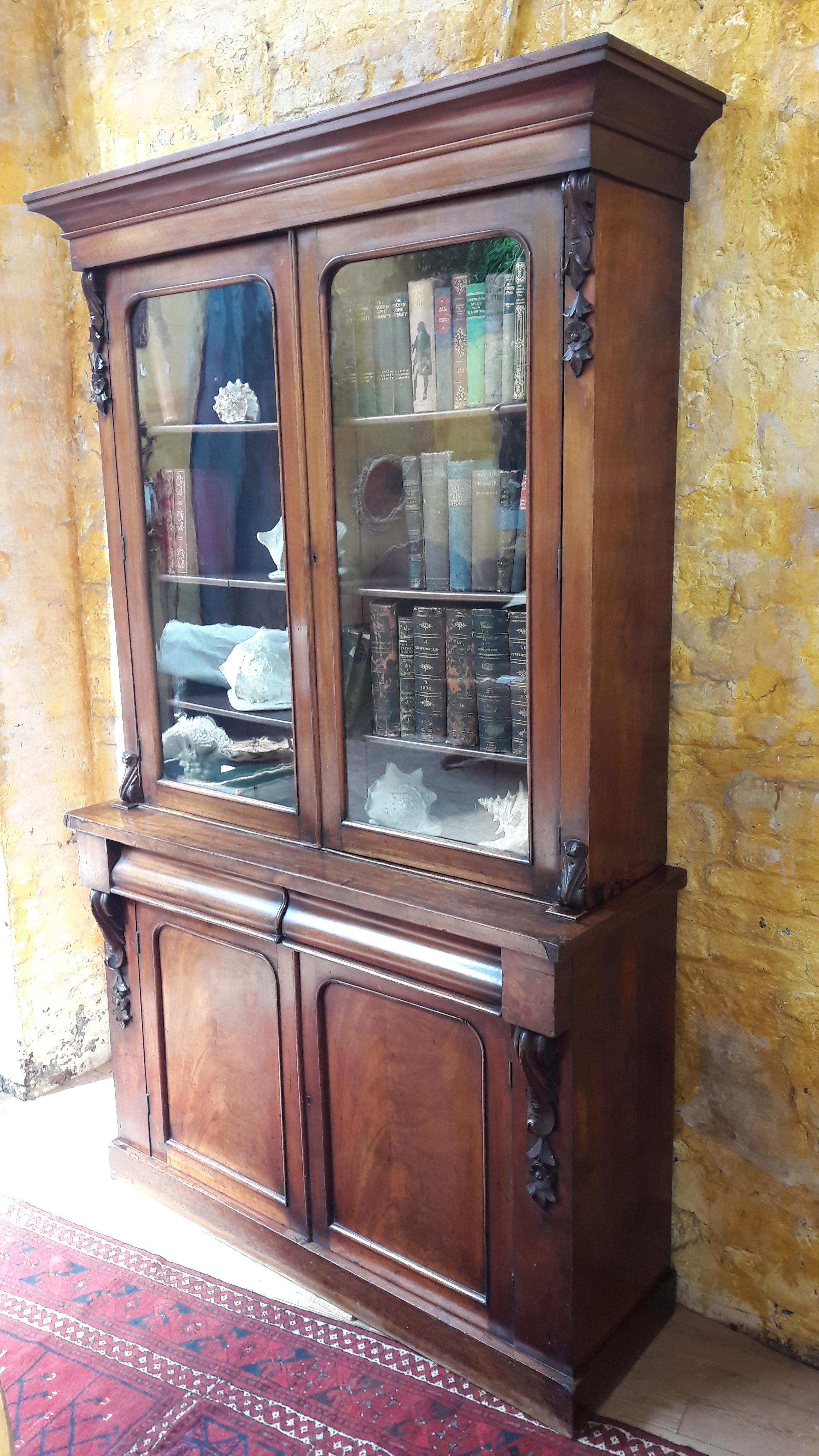 Victorian Mahogany Bookcase 19th Century