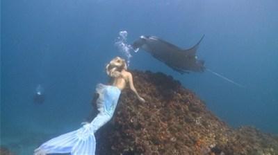 Real-Life Mermaids Video - ABC News