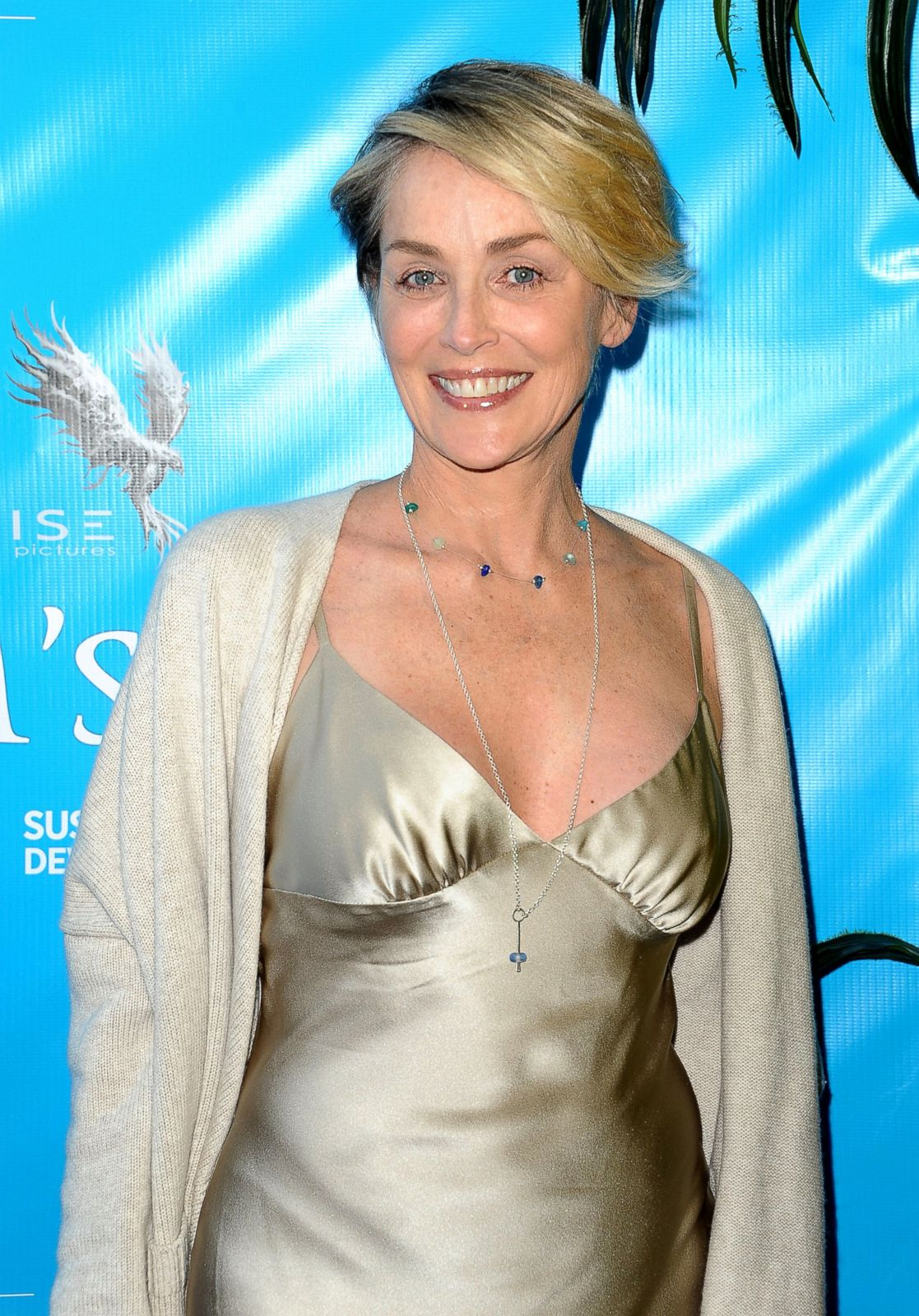 Sharon Stone Smiles At Movie Premiere Picture Fab Over