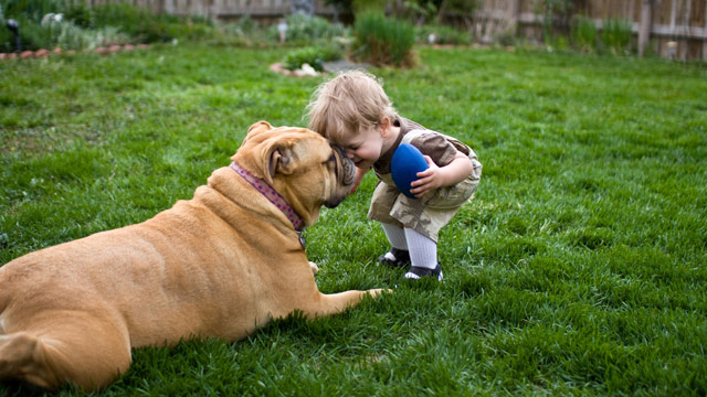 Image result for kids and dogs