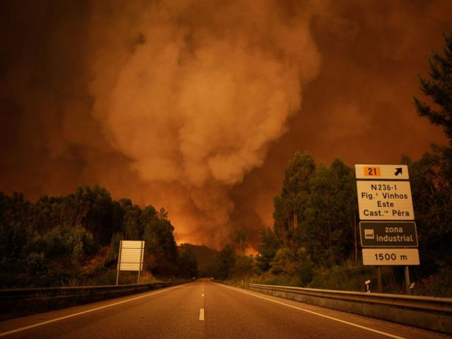 PHOTO: Smoke rises above trees during a forest fire in Pedrogao Grande, Leiria District, Portugal, June 17, 2017.